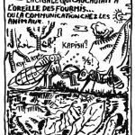 la cigale qui chuchotait à l'oreille des fourmis ou la communication chez les animaux (crédit : Luc Arnault)